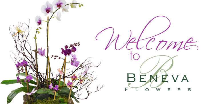 Beneva Flowers voted #1 Florist in Sarasota